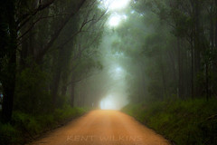 Clearing (kento2014) Tags: road trees cloud mist grass fog landscape bush flickr australia blurred estrellas queensland stanthorpe creativemindsphotography coppercloudsilversun blinkagain inspiringcreativeminds
