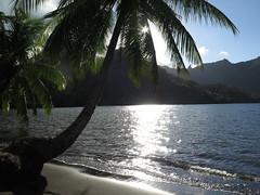 "Moorea <a style=""margin-left:10px; font-size:0.8em;"" href=""http://www.flickr.com/photos/83080376@N03/17212075896/"" target=""_blank"">@flickr</a>"