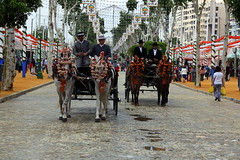 Feria de Sevilla 2015 (ricardocarmonafdez) Tags: horses color canon real caballos sevilla fiesta ngc abril feria urbano albero riders carruaje 2015 farolillos jinetes caballistas 60d ricardocarmonafdez