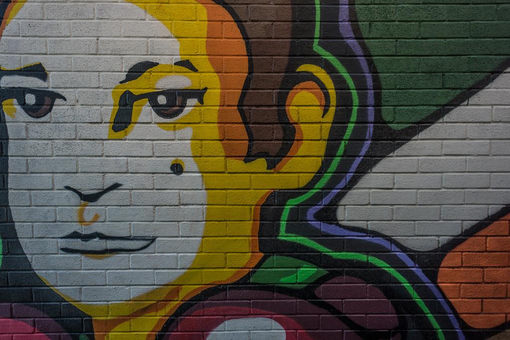 STREET ART IN DUBLIN - CABRA PARK URBAN GALLERY [A REALLY UGLY LANE]-104047