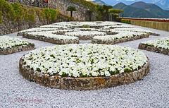 Villa Rufolo Gardens - the terrace 2