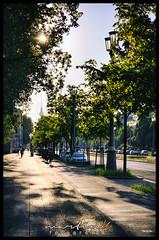 Karl-Marx-Allee (Krueger_Martin) Tags: city trees light urban sun tree berlin green licht spring colorful stadt fernsehturm grn sonne bume friedrichshain baum farbig hdr bunt frhling allee karlmarxallee sonnenlicht photomatix festbrennweite primelense canoneos7d canonef40mmf28stm