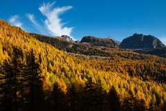 L'autunno in Val d'Ayas (antony5112) Tags: autumn trees sunset italy mountains fall yellow alberi clouds montagne italia tramonto nuvole valle giallo valley larch autunno larches ayas aosta larici