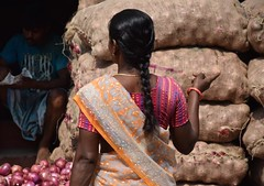 """I'll Have One of Those."" (The Spirit of the World) Tags: food india shopping asia market streetscene warehouse garlic produce local bags shallots sari madurai southernindia marketscene indianwoman argriculture bagsofproduce"