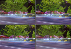 LIMG_0329 (qpkarl) Tags: stereoscopic stereogram stereophoto stereophotography 3d pinhole stereo stereoview stereograph stereography stereoscope stereoscopy stereographic