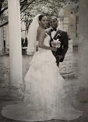 _TPP6421 (Truly Priceless) Tags: roses cake groom tears smiles couples kisses brides sacramento weddingdress blushingbrides trulypricelessphotography