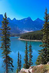IMG_6381 (photoggigraphy) Tags: canada canon see wasser outdoor pflanze landscpae landschaft baum lakemoraine pinie konifere heiter