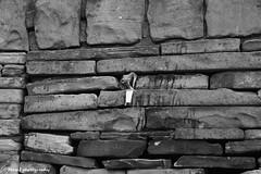The wall. (MAMF photography.) Tags: old uk greatbritain england blackandwhite bw art monochrome beauty wall blackwhite google nikon flickr noir noiretblanc zwartwit unitedkingdom britain yorkshire negro north gb upnorth zwart pretoebranco schwarz biancoenero westyorkshire morley googleimages northernengland enblancoynegro zwartenwit greatphotographers ls27 mamf inbiancoenero schwarzundweis morleyleeds nikond7100 mamfphotography