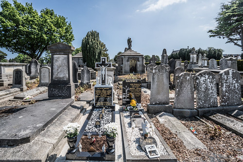 MOUNT JEROME CEMETERY AND CREMATORIUM IN HAROLD'S CROSS [SONY A7RM2 WITH VOIGTLANDER 15mm LENS]-117093