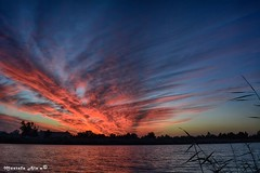 Sunset from IRAQ    - (Mustafa Ala'a) Tags: nikon      sunset nasiriyah iraq annasiriyah