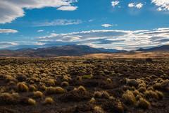 pampa (Stephan Haecker) Tags: patagonia argentina pampa southamaerica