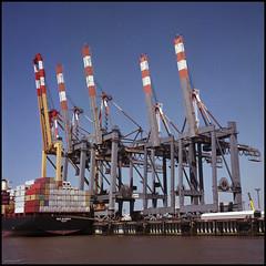 Bremerhaven Analog 2016 (411) (Hans Kerensky) Tags: rolleiflex automat 35a 6x6 tlr lens schneider xenar 135 75mm fujicolor pro 160ns film scanner plustek opticfilm 120 bremerhaven harbor cranes container ship