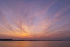 06/27 2016 SDIM7868 (@1008988) Tags: sunrise sigma tokyobay merrill foveon sd1m 20mmf14dghsm