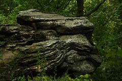 Garden of The Gods (Muzik Hounds) Tags: park rock garden illinois national gods shawnee formations