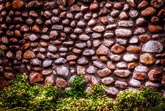 Stonework (Daniela 59) Tags: plants wall garden southafrica stones stonework stonewall gardenwall westerncape lourensfordwineestate wallwednesday danielaruppel