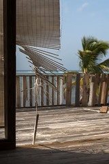 Squatters Haven (-j-o-s-e-) Tags: wood blue house storm tree abandoned beach water blind balcony empty hurricane ivan ruin grand palm east abandon shore end caribbean cayman wreck reef derelict rattan fronds bleached