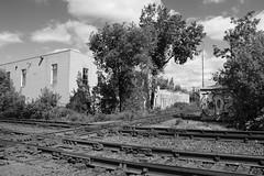 Davenport Diamond (hogtown_blues) Tags: railroad blackandwhite toronto ontario canada monochrome publictransit publictransportation railway commuterrail bloorlansdowne metrolinx junctiontriangle davenportdiamond barriegoline