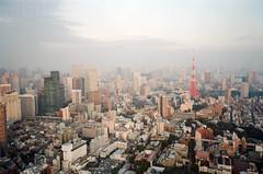 -14 (UME2nd) Tags: fujifilm japan natura classica