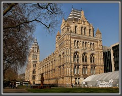 The Natural History Museum London  ...
