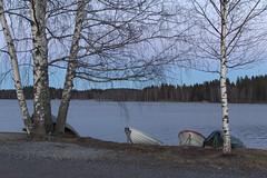 Härmälän ranta, Tampere Finland