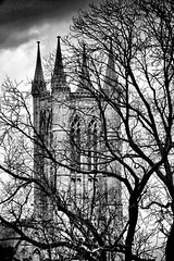 Lincoln Cathedral From Castle Walk (JonCoupland) Tags: summer boston photography spring jon lincolnshire coupland 2015
