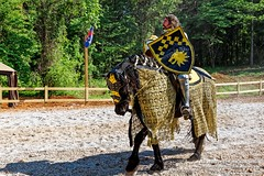 Tennessee Medieval Faire (Paul's Captures (paul-mashburn.artistwebsites.com)) Tags: knights swordfighting jousting medievalfaire knightsinarmour medievalfestival harrimantn roanecountytn thetennesseemedievalfaire tennesseemedievalfaire