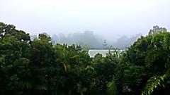Misty moisty morning (madtyke1) Tags: morning mist home