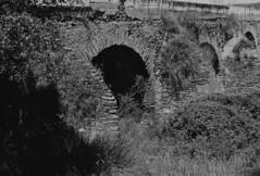 Ponte Sobre a Ribeira Grande (rgrant_97) Tags: bw film portugal monochrome nikon pb bn xp2 alentejo ilford f55