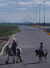 IMGP3432 (kudrdima) Tags: 23 20      road reconstruction e95