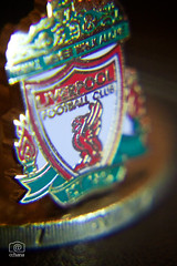 Macro Monday : My Liverpool cufflinks are smaller than a coin (cchana) Tags: red white macro green metal liverpool coin liverbird pound currency bold cufflinks 2 eternalflame lfc gbp liverpoolfc  ynwa liverpoolfootballclub youllneverwalkalone macromonday jft96 smallerthanacoin