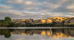 Del Valle Livermore, California (katiewong511) Tags: sanfrancisco sunrise fishing outdoor bayarea eastbay livermore regionalpark