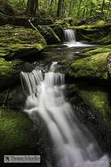 Cascades ~ Tunxis Forest (Thomas Schoeller Photography) Tags: green nature water outdoors waterfall moss connecticut massachusetts scenic newengland rivers cascades ethereal berkshires verdant brook streams wilderness preserve mossy riverrock tumbling fallriver naturephotography riverrapids longexposures mountainstreams waterinmotion openspaces hartfordcounty outdoorphotography cascadingwater barkhamsted intimatelandscape outdoorphotographer waterfallpictures sceniclandscapes fallsbrook naturefineart newenglandwaterfalls tunxisstateforest scenicconnecticut scenicnewengland westhartland newenglandphotography etherealwater waterfallsofnewengland waterfallsofconnecticut