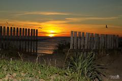 Rota - Sunset (Marcial Carretero) Tags: sunset sea atardecer mar spain playa cdiz rota puntacandor