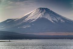 Take a Fuji alone (shinichiro*) Tags: 20160219sdim0567 2016 crazyshhin sigmasd1merrill sd1m sigma18300mmf3563dcmacrooshsm winter february fuji lakeyamanaka   27627543581 201607gettyuploadesp
