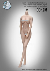DOLPHIN TOYS DO-2M Stainless  Seamless Female Mid Bust Pale Body - 06 (Lord Dragon ) Tags: hot female toys actionfigure doll seamless onesixthscale 16scale dolphintoys 12inscale