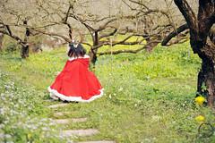 SDF_1001 (SendoFu) Tags: bonnet ボンネット エプロン風スカート blouse bl ブラウス headbow kc カチューシャ bnt 蕾絲 維多利亞 jsk op onepiecedress ワンピース jumperskirt ジャンパースカート nop lolita lolitafashion 蘿莉塔 蘿莉塔時裝 ロリータ・ファッション sweetlolita classicallolita
