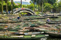 Vietnam (gonzalez.px) Tags: bridge color water ro rural work river landscape puente botes pier trabajo agua colorful asia paisaje vietnam embarque sudeste embarcacin tamcoc southest