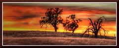 Folsom_3052d (bjarne.winkler) Tags: sunset red orange golden over folsom fields