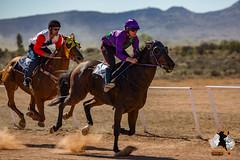 20160423-2ADU-019 Pferderennen in Yunta