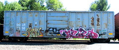 smells - nezo (timetomakethepasta) Tags: smells 907 nezo nyc freight train graffiti boxcar rusty sglr