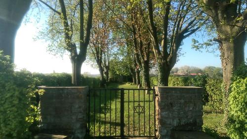 Jüdischer Friedhof bei Hahnheim