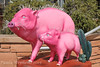 Pink Pigs (Paula Stephens) Tags: arizona sculpture southwest art animal statue mammal pig sedona az swine