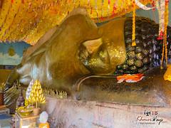 Buddha - Kulen Overnight