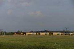 NS 1756 met DDAR 7342 onderweg bij Elst richting Nijmegen 17-05-2016 (marcelwijers) Tags: nijmegen ns met bij onderweg 1756 elst ddar richting 7342 17052016