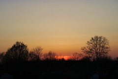 a little bit of red (thatgirlwiththekicks) Tags: blue trees sunset red sky orange ontario canada silhouette yellow golden dusk stthomas saintthomas
