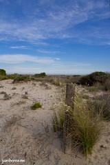 Arenales costeros (juanhorea.me) Tags: sea espaa mar spain murcia mediterraneansea sanpedrodelpinatar salinasyarenalesdesanpedrodelpinatar marmediterrrneo