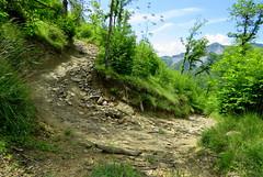 IMG_0060x (gzammarchi) Tags: strada italia natura pietra montagna paesaggio monti bosco curva sterrato mulattiera firenzuolafi