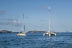 catamaran at rest (Alida's Photos) Tags: sailing catamaran tropical caribbean bvi britishvirginislands