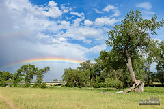 Shimmering Rainbow (kevin-palmer) Tags: sheridan wyoming july summer afternoon tamron2470mmf28 nikond750 color colorful rainbow sky storm stormy weather clouds circularpolarizer green trees grass blue welchranchrecreationarea bridge