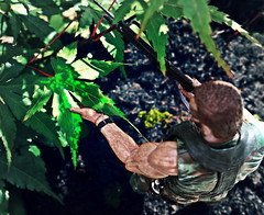 Predator (RK*Pictures) Tags: predator arnie arnoldschwarzenegger hunt blood trophy jungle alien neca cloak stealth hostile bad horror blades mf ugly toy cult classic 1987 johnmctiernan sciencefictionactionfilm sciencefiction movie carlweathers billduke jesseventura kevinpeterhall specialforces centralamerica guerrillaterritory stanwinston extraterrestriallife extraterrestrial actionfigure anytime kill hunter prey victim hostages rescuemission team contact demon plasmaweapon heat trees creature eldiablocazadordehombres firefight unknown camouflage cloakingdevice dutch enemy hidden invisible corpses skinned sport thedevilmanhunter heatsignature thermalsensor trap junglewarfare selfdestruct green glowingblood fear angry wild weapon cool